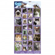 Stickervel Katten