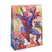 Cadeautas Medium Spiderman