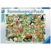 Puzzel Jungle, 2000st.