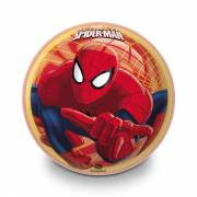 The Ultimate Spiderman Decorbal