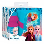Drinkfles en Broodtrommel Frozen 2