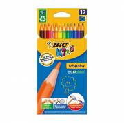 BIC Kids ECOlutions Evolution, 12st.