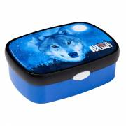 Campus Lunchbox Midi - Animal Planet Wolf