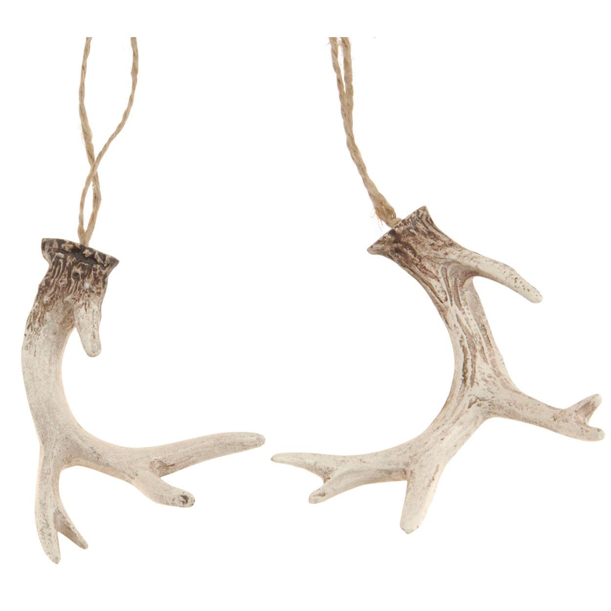 Hangdecoratie gewei wit bruin 2st online kopen for Wit gewei decoratie