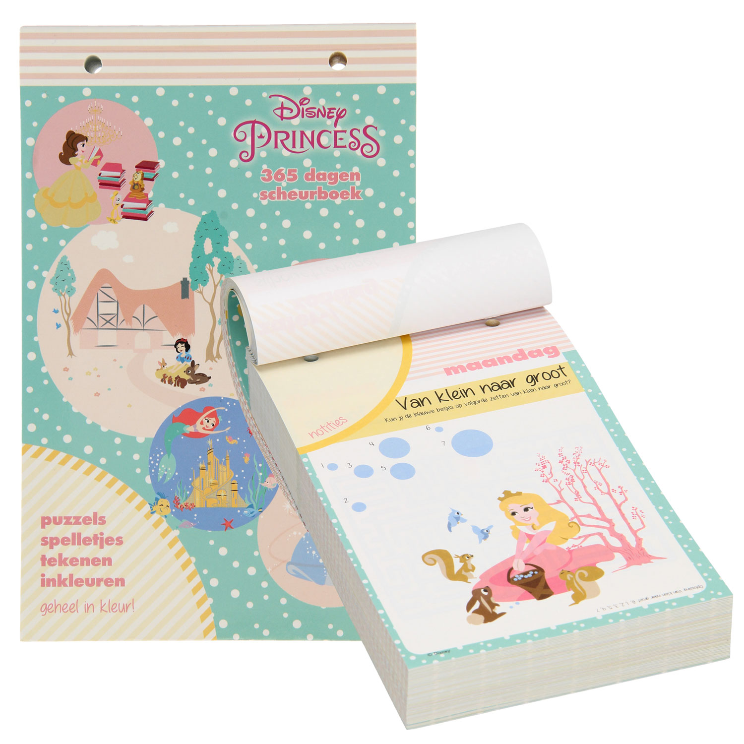 Scheurboek Disney Prinses